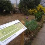 Recorrido botanico accesible Bierge